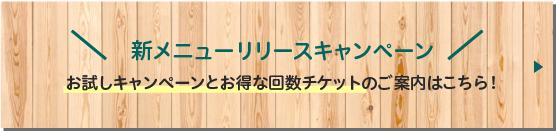 パワーレメディ,日本初,群馬フィーノエステサロン
